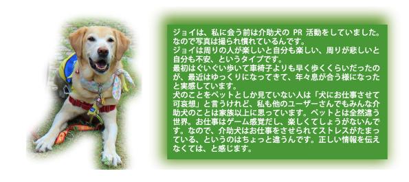 20016年7月1日現在、全国の介助犬実働は71頭。ジョイは岐阜県でたった1頭の介助犬。